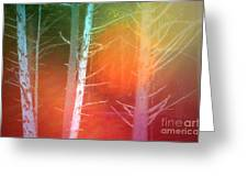 Lens Flare In The Forest Greeting Card