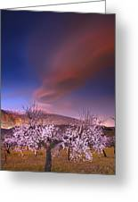 Lenticular Clouds Over Almond Trees Greeting Card