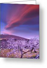 Lenticular Clouds Over Sierra Nevada Greeting Card