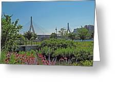 Leonard P Zakim Bridge From Cambridge Greeting Card