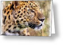 Leopard 7 Greeting Card