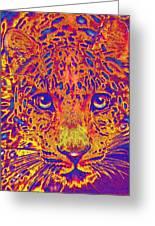 Leopard Eyes Orange Greeting Card