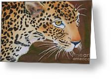 Leopard In Botswana Greeting Card