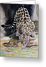 Leopard N.2 Greeting Card