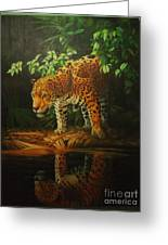 Leopard On Pond Greeting Card