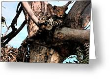 Leopard Spotted Greeting Card