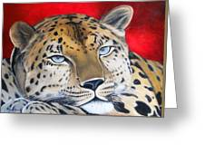 Leopardo Greeting Card