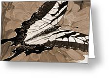Lepidoptery - Sepia Greeting Card