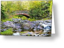 Lester Park Bridge Greeting Card