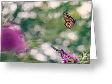 Let Your Beauty Show Greeting Card by Brenda Schwartz
