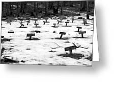 Letchworth Village Cemetery Greeting Card