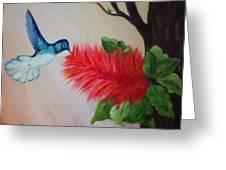 Let's Celebrate Spring Is Here Greeting Card by Janis  Tafoya
