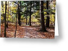 Let's Take A Walk In The Woods Greeting Card