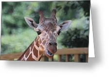 Let's Talk About It Greeting Card