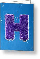 letter H underwater with bubbles  Greeting Card
