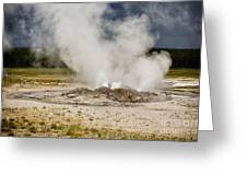 Letting Off Steam - Yellowstone Greeting Card