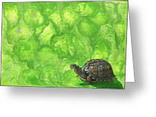 Lettuce Fetish Greeting Card