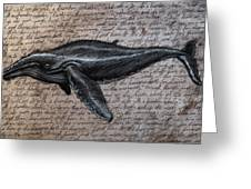Leviathan Greeting Card by Mark Zelmer