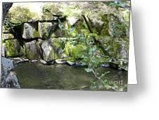 Lewis Creek Trail Greeting Card