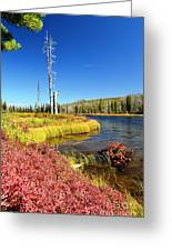 Lewis River Fall Greeting Card