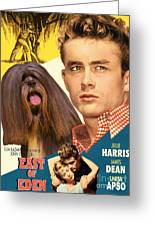 Lhasa Apso Art - East Of Eden Movie Poster Greeting Card