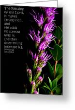 Liatris On Black II Greeting Card