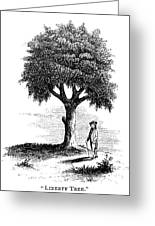 Liberty Tree, 1765 Greeting Card