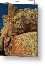 Lichen On Boulders Greeting Card