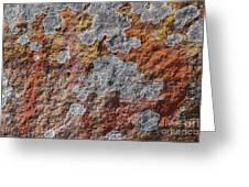 Lichen On Sandstone Greeting Card