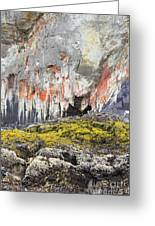 Lichen On Sea Beach Rock Greeting Card