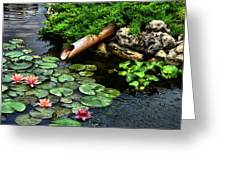 Life At The Lily Pond Greeting Card