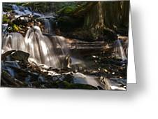 Life Begins To Flow Greeting Card