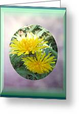 Life Is Made Up Of Dandelions Greeting Card