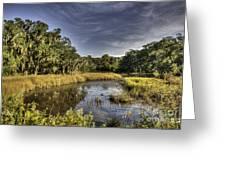 Life On The Marsh Greeting Card
