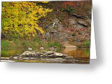 Life On The River Square Greeting Card by Bill Wakeley