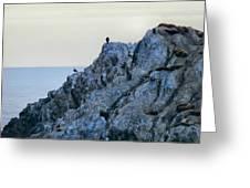 Life On The Rocks Greeting Card