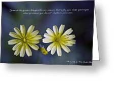 Life Unseen Greeting Card