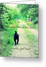 Life's Adventures Greeting Card by Andrea Dale