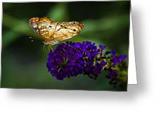 Light Beneath My Wings  Greeting Card