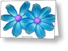 Light Blue Asters Greeting Card