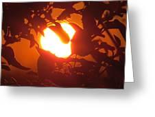 Light Bulb Greeting Card