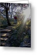 Light For The Path Greeting Card