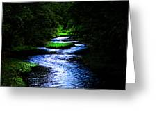 Light In The Creek Greeting Card