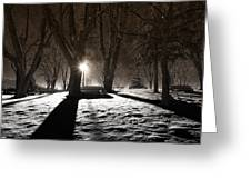 Light In The Shadows Greeting Card