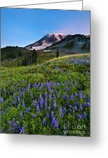 Light On The Mountain Greeting Card