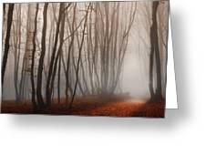 Light Path Greeting Card by Dobromir Dobrinov