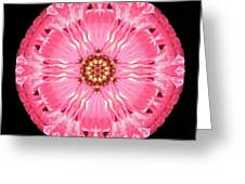 Light Red Zinnia Elegans Flower Mandala Greeting Card by David J Bookbinder