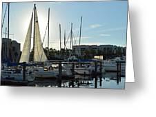 Sun Set Bay Greeting Card