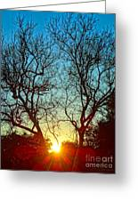 Light Sanctuary Greeting Card by Gem S Visionary