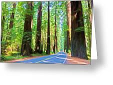 Light Through The Redwoods Greeting Card